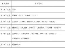 国林环保网上发行摇号抽签仪式结束 中签号码共2.67万个