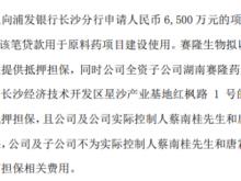 赛隆药业全资子公司拟向银行申请6500万元项目开发贷款