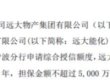 远大控股全资子公司为远大能化提供不超过5000万元连带责任担保