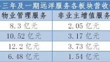 """""""亿家""""转道港交所 新三板摘牌两年后远洋服务赴港IPO"""