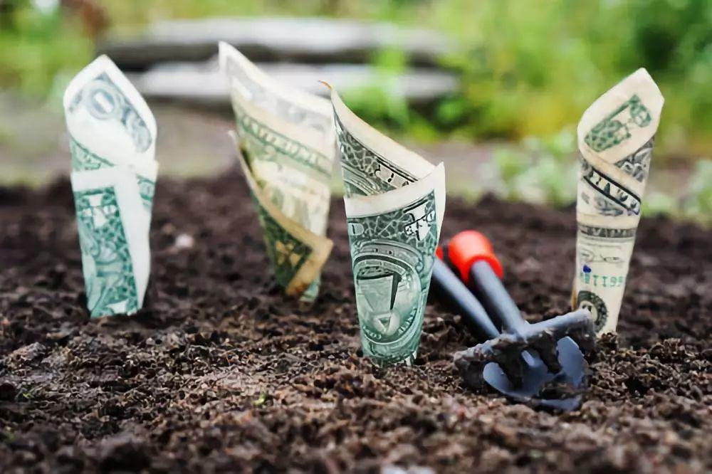 高国垒   高净值人群参与股权投资的N条忠告
